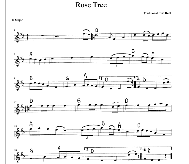 Tunebook With Sheet Music and MP3 Audio | Doug Tipple's Irish Flutes